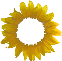 metah logo